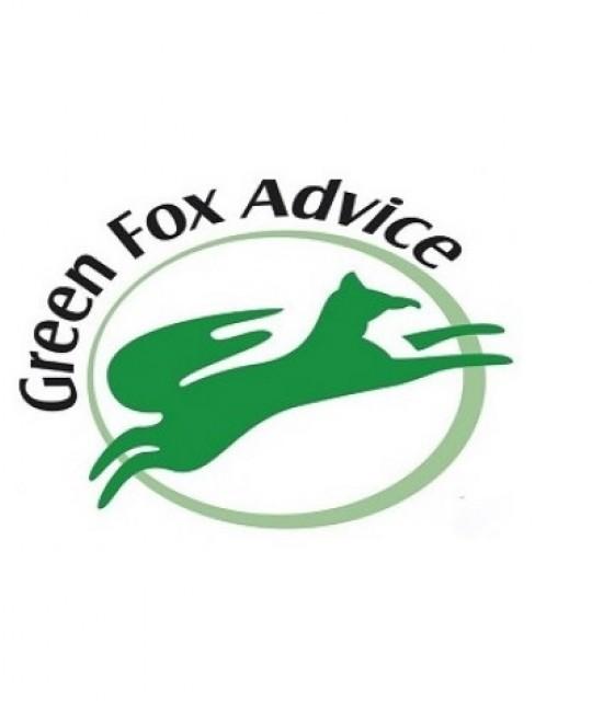greenfox2